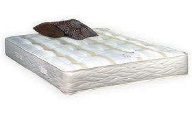 Staples Pocket Ortho Mattress Mattress Online